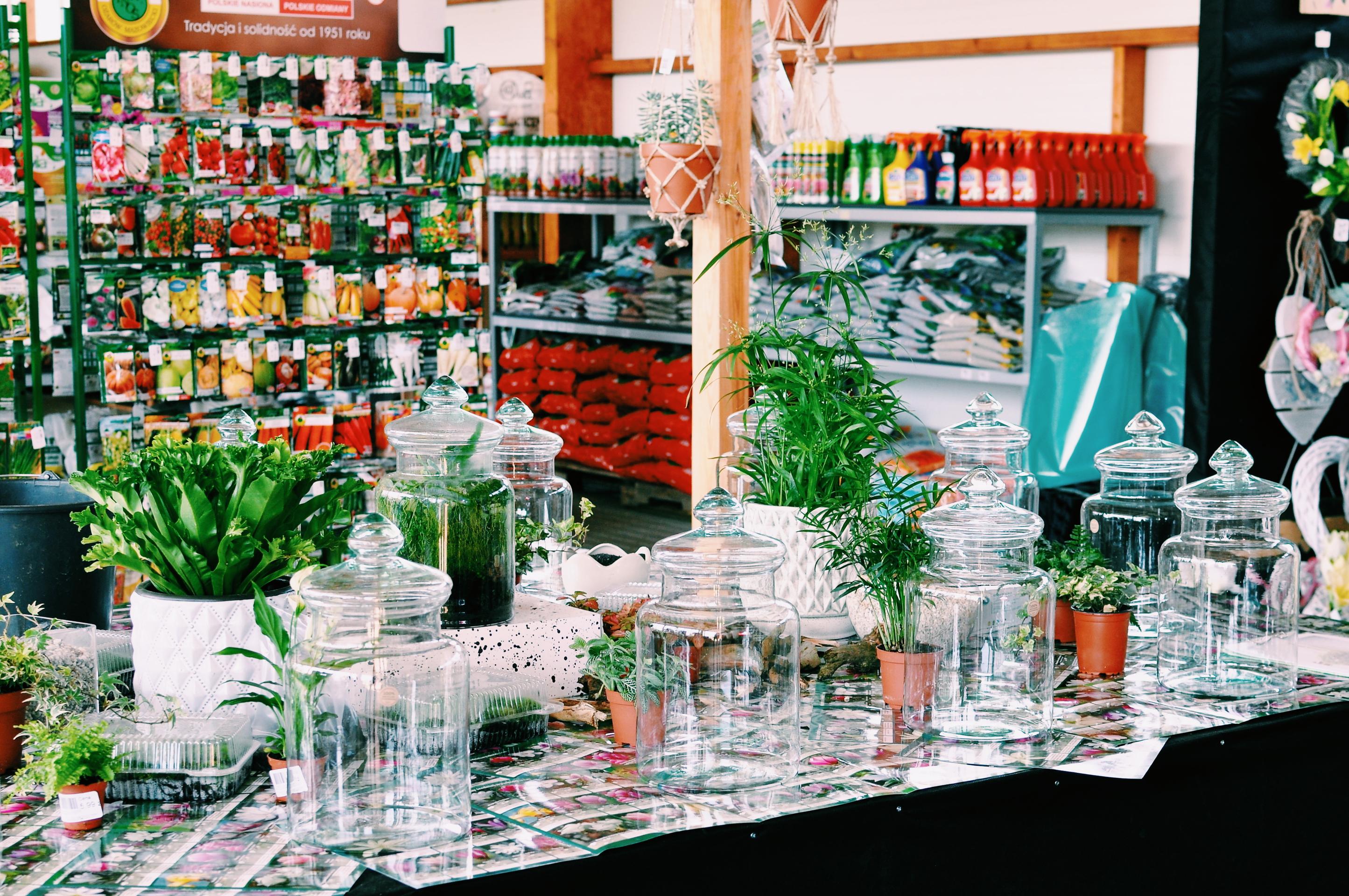 Ogrody w szkle - Warsztaty w Zielonym Zakątku