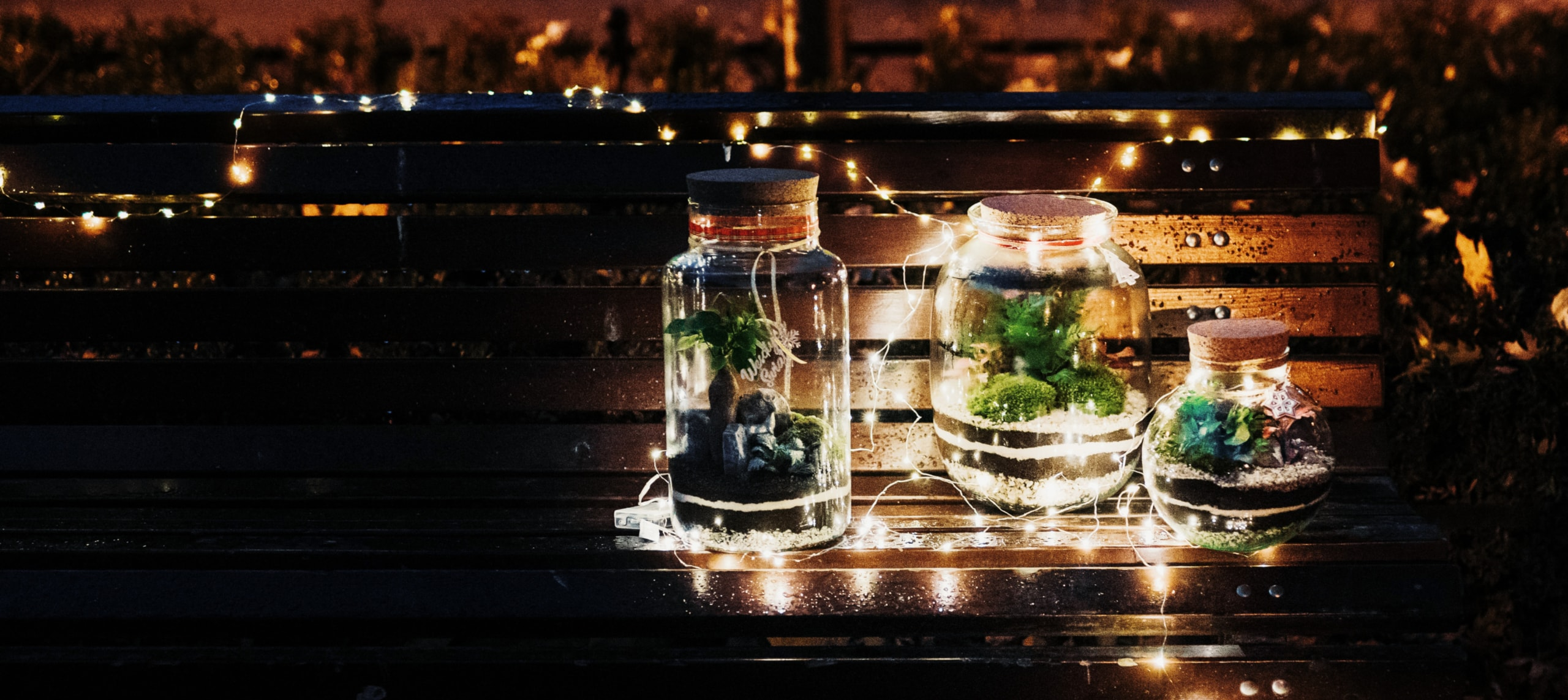 las w słoiku - kolekcja świąteczna