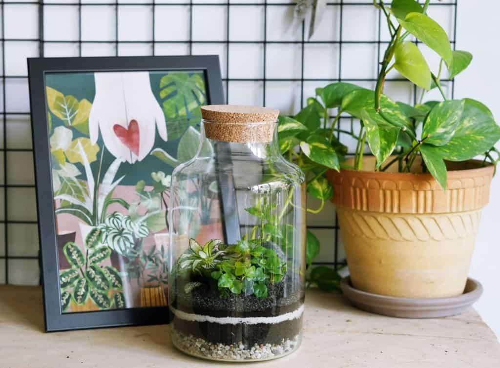 zestaw diy zrób to sam miniaturowy las w butli