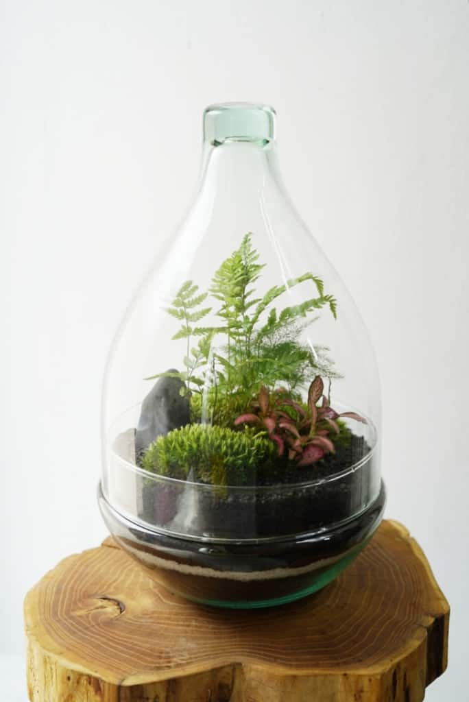 Szklana kopuła kropla wys. 30 cm