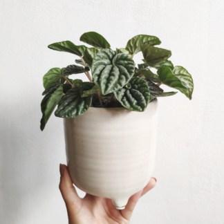 Osłonka ceramiczna na nóżkach Kapuczina 14 cm